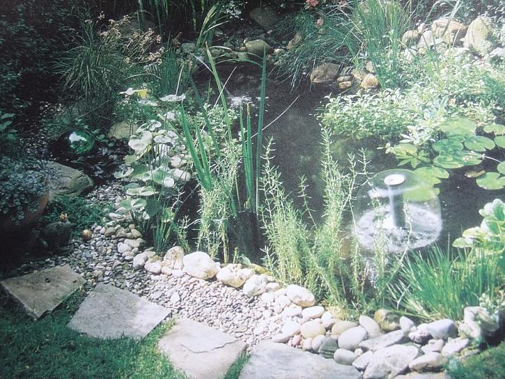 Tip na knihu - Voda v zahradě