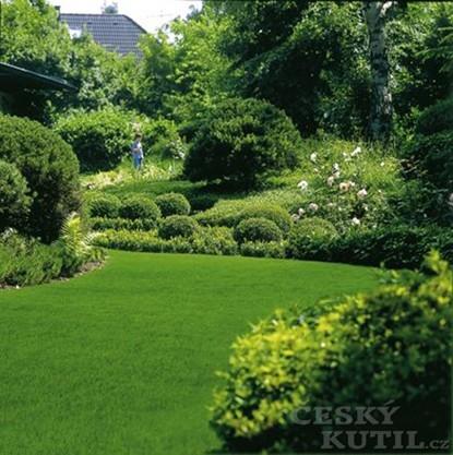 Vertikutaci trávníku ještě stihnete