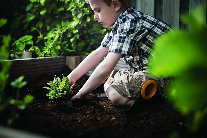 Jak vést děti k lásce k zahradničení a přírodě?