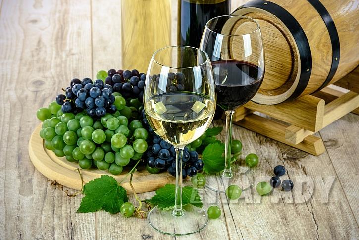 Kam na výlet: Za ochutnávkou vína na Mělnický košt i na Otevřené vinné sklepy v Čejči  4