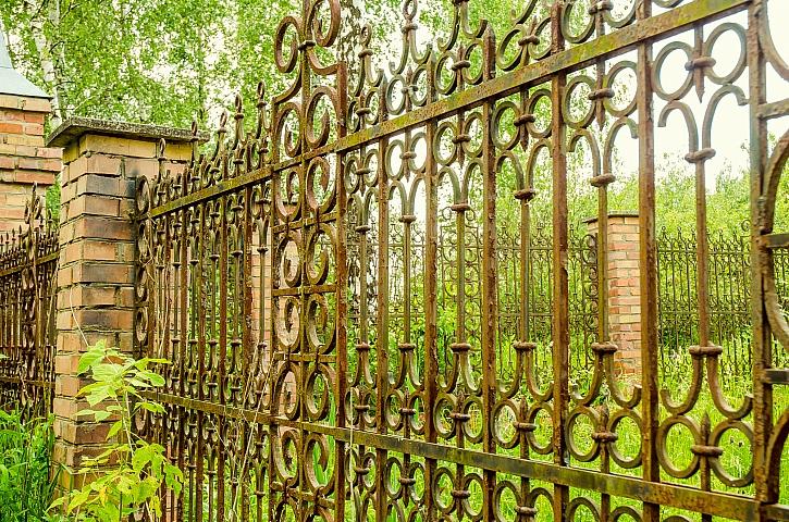 Rezavý plot