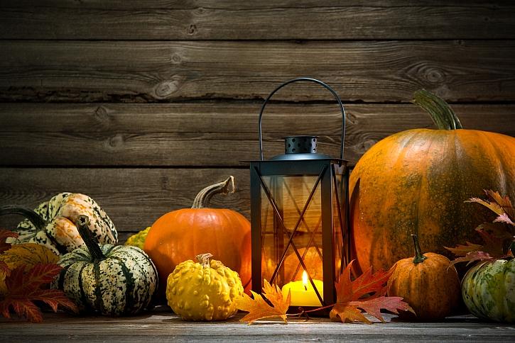 Osvěžte svůj byt podzimními květinovými dekoracemi