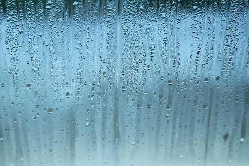 Vlhkost, která se sráží na oknech, může přispět k rozvoji plísní
