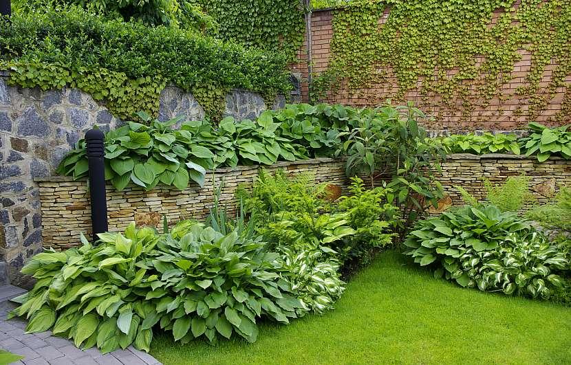 Kout zahrady