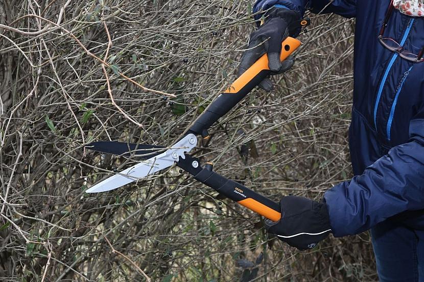 nůžky na živý plot