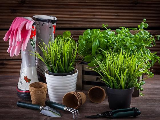 Březen na zahradě je pro zahrádkáře čas práce (Zdroj: Depositphotos)