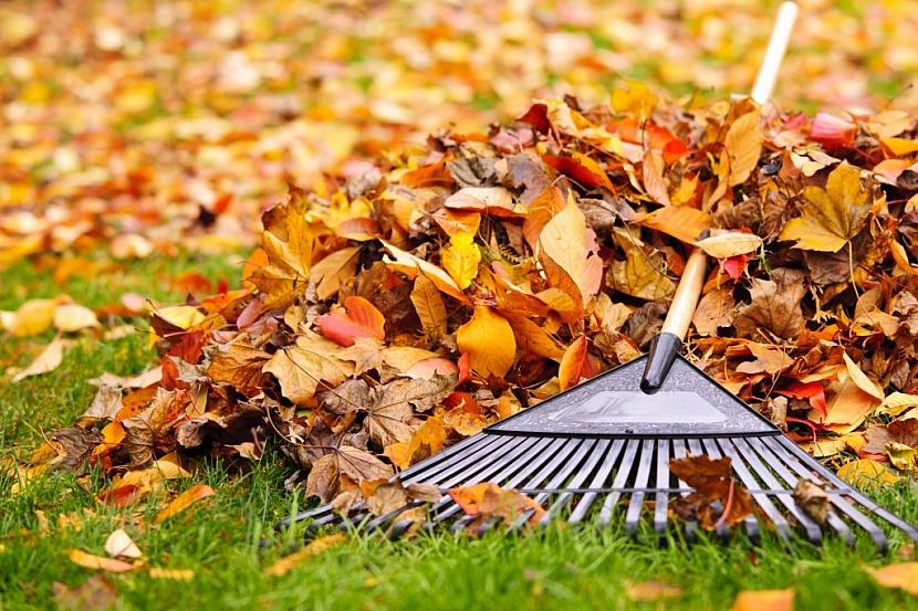Prstencové hrábě nejlépe poslouží při hrabání listí