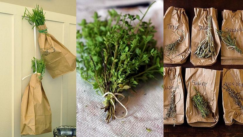 Sběr a sušení léčivých bylinek : sušení v papírovém sáčku