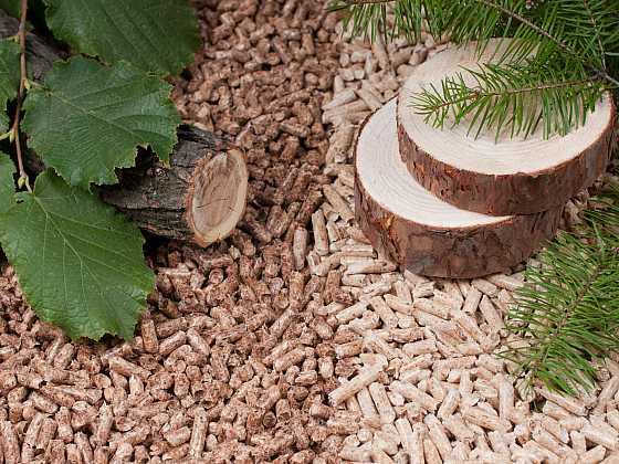 Dřevěné pelety zažívají v Česku boom i v krizi. V pololetí se vyrobilo o 26 % více pelet než loni (Zdroj: Depositphotos)