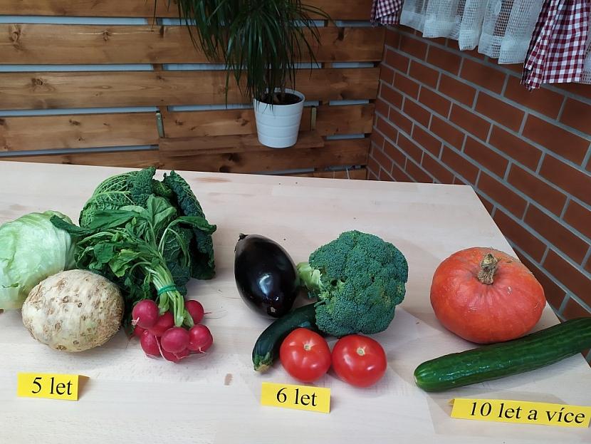 Každá zelenina má jinou dobu klíčivosti semen