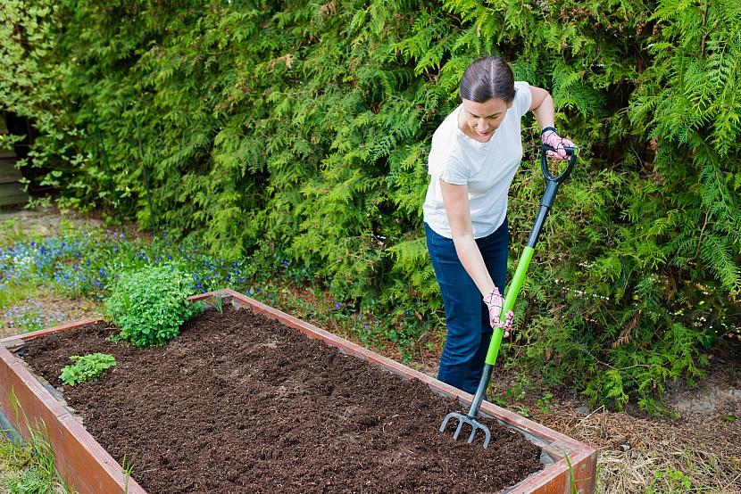 hrábě na zahradě