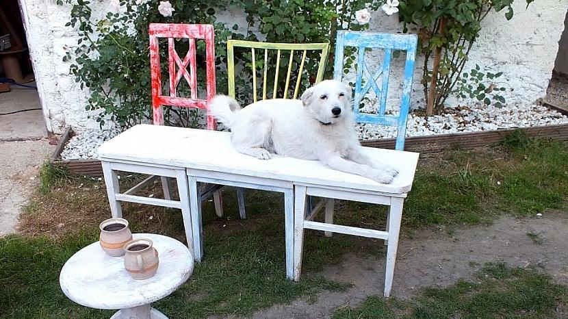 Lavice ze starých židlí je hotová a můžeme se posadit
