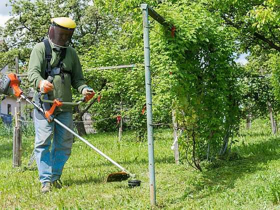 Víte, jak vyměnit strunu? (Zdroj: Depositphotos)