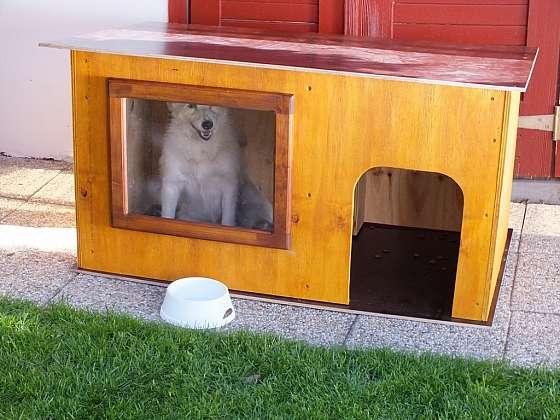 Vyrobte svému psovi letní boudu s oknem (Zdroj: HobbyPRstudio)
