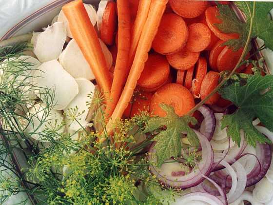 Kořenová zelenina patří k nejpěstovanějším zeleninám (Zdroj: Ludmila Dušková)