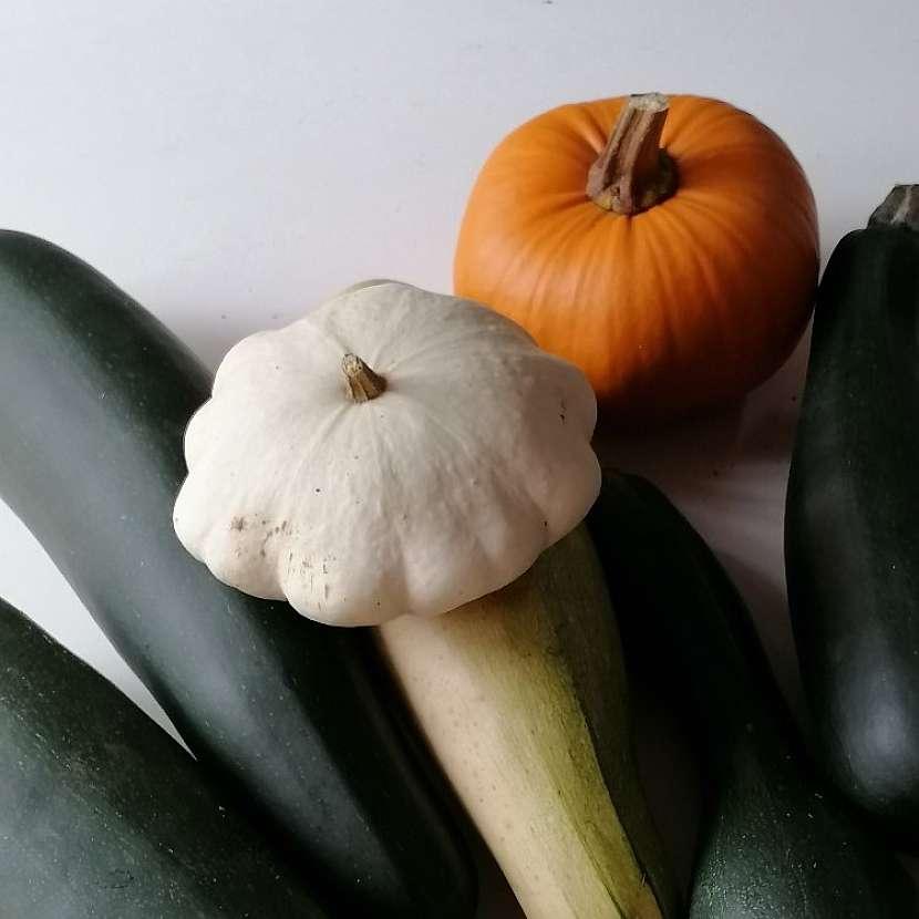 Dýně, cukety a patizony, které dozrávají během října, se hodí také na uskladnění