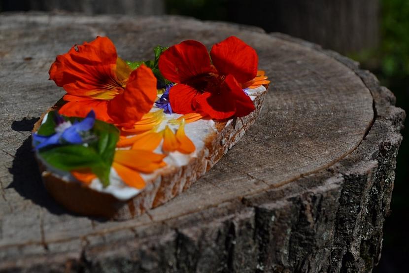 Využití bylin – bylinky v kuchyni, lékárničce i koupelně