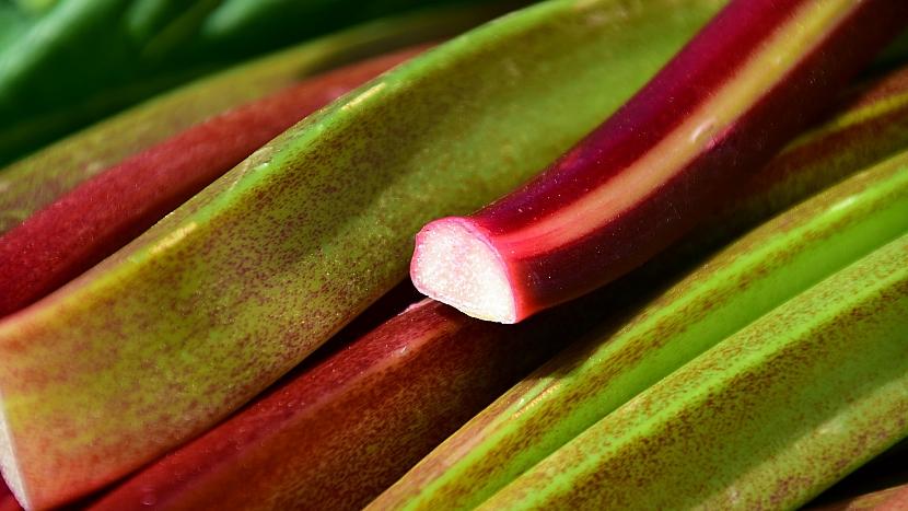Skrytá řeč rostlin: rebarbora představuje lidské kosti