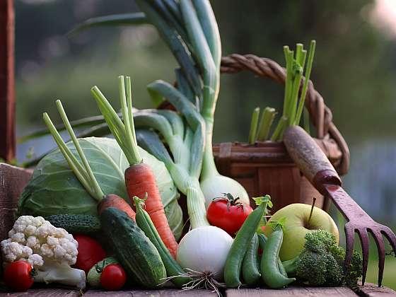 Jen pravidelnou péčí o rostliny se dočkáme bohaté úrody zeleniny (Zdroj: Depositphotos (https://cz.depositphotos.com))
