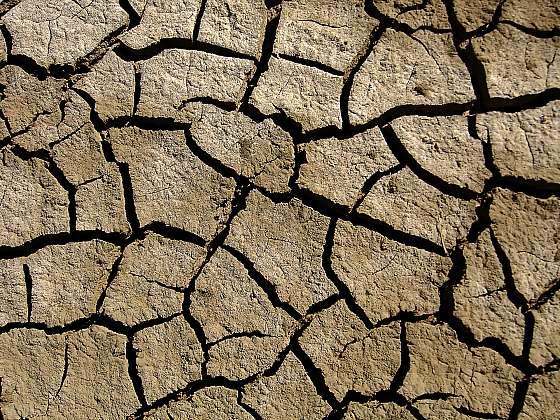 Zasolení půdy mění ornici v důsledku přemíry průmyslových hnojiv na poušť bez života (Zdroj: Depositphotos)