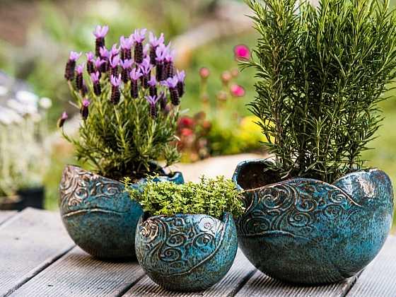 Bylinkám se bude dařit v originálních květnících (Zdroj: Fler)