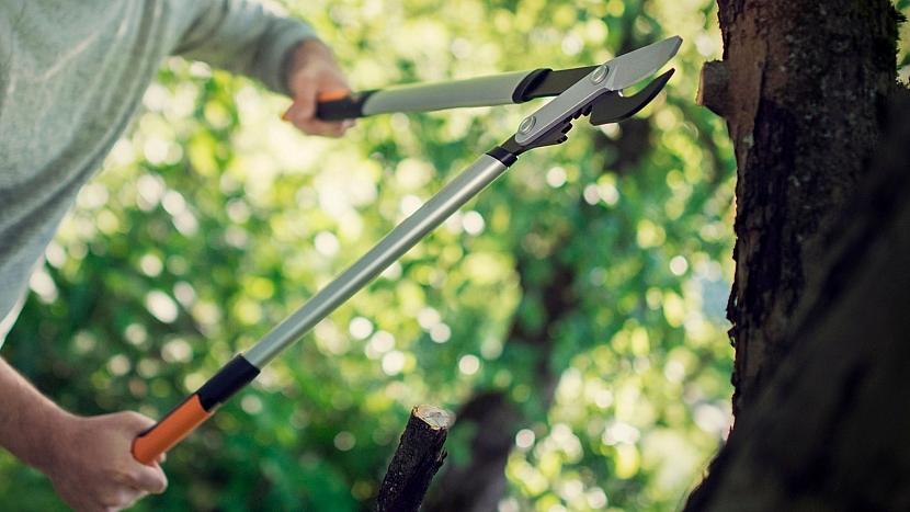 Zimní řez jabloní a hrušní musíme stihnout do rašení: nůžky na silné větve PowerGear X