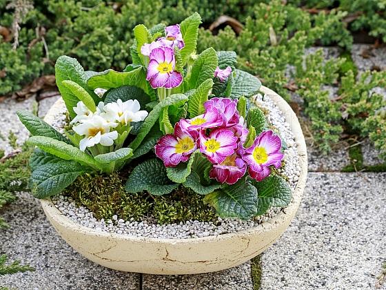 Velikonoční výzdoba nejen do zahrady (Zdroj: Depositphotos)
