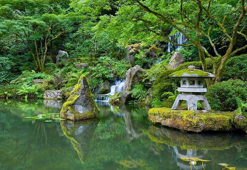Japonská zahrada s jezírkem
