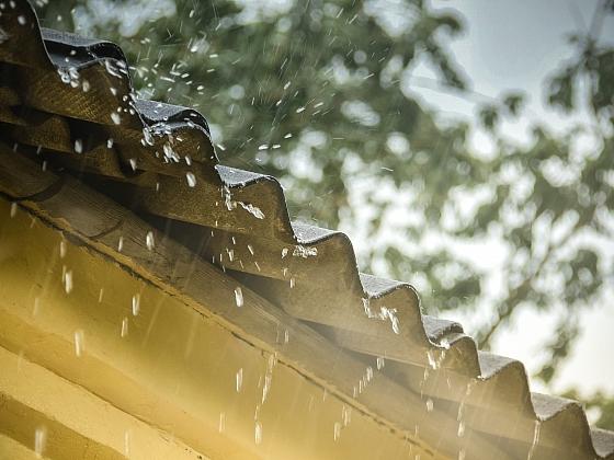 Využití dešťovky doma i na zahradě (Zdroj: Depositphotos)