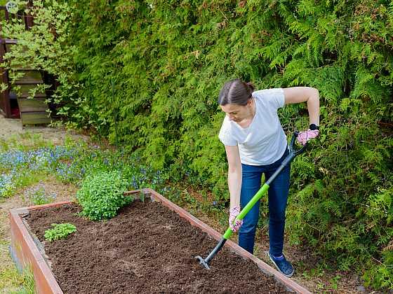 Jak správně připravit půdu před setím (Zdroj: Depositphotos)