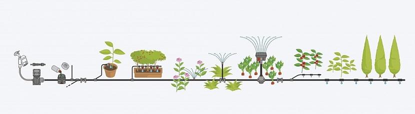 Záhony i květináče