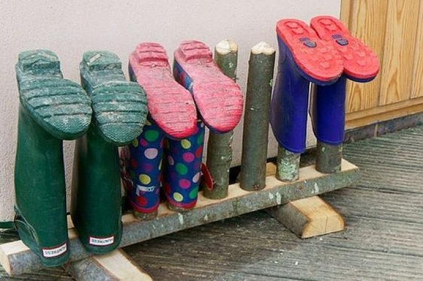 Šup sholinami na déšť