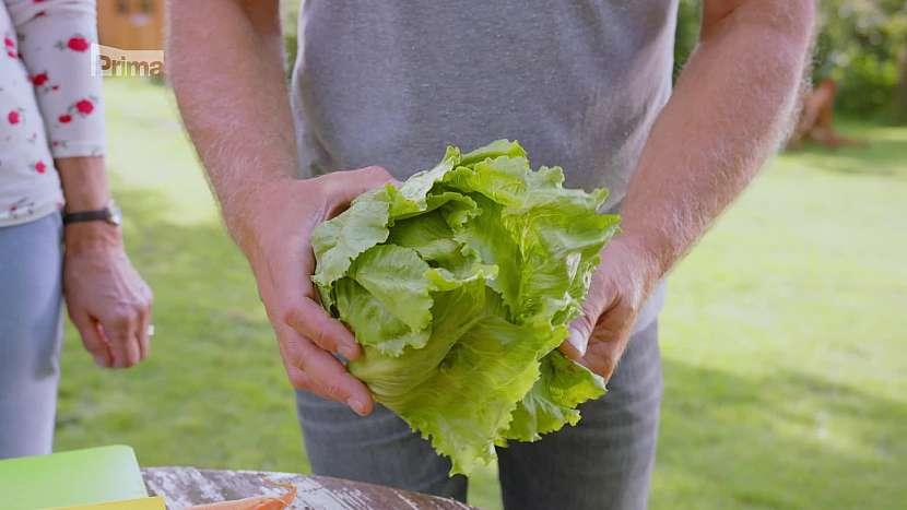 Lahůdkový ledový salát Traper