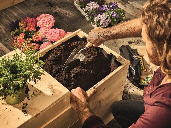 Předpěstování zeleniny a zahradničení pro začátečníky (Zdroj: Hornbach)
