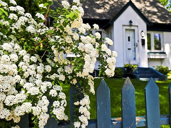Zahrada nebo jen zahradní kout, laděné do bíla, jsou skutečnou pastvou pro oči (Zdroj: Depositphotos.com)