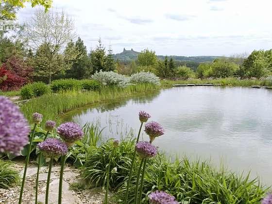 Zahrada, jejímž hlavním tématem je zadržování dešťové vody Zdroj: Prima DOMA MEDIA, s.r.o.)