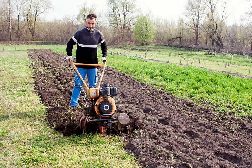 Tvorbu nových ploch pro pěstování necháme na podzim