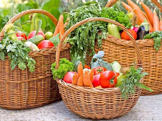 Seznamte se s novými odrůdami velmi chutné zeleniny (Zdroj: Depositphotos)