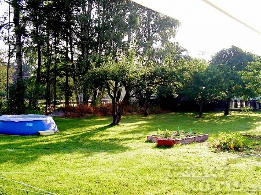 Velká zahrada s malým bazénem