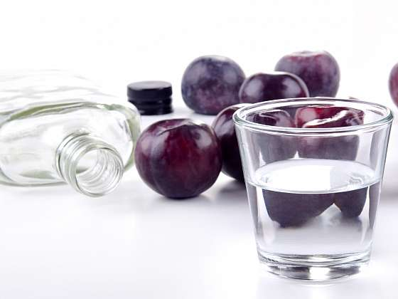 Jak založit kvas a nechybovat (Zdroj: Depositphotos (https://cz.depositphotos.com)