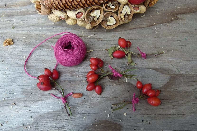 Věnec s ořechy jako krmítko pro ptáky: přidejte šípky