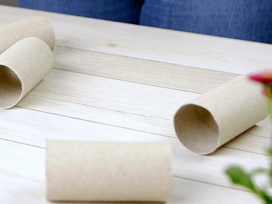 Jak vysadit semínka do květináčků z ruliček od toaletního papíru 1