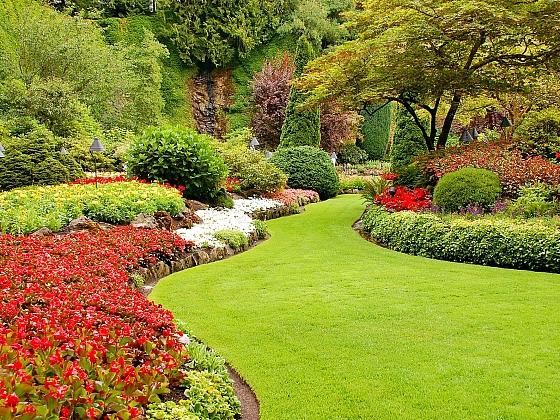 Parkový trávník