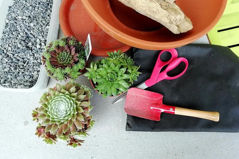 Materiál a rostliny na minizahrádku