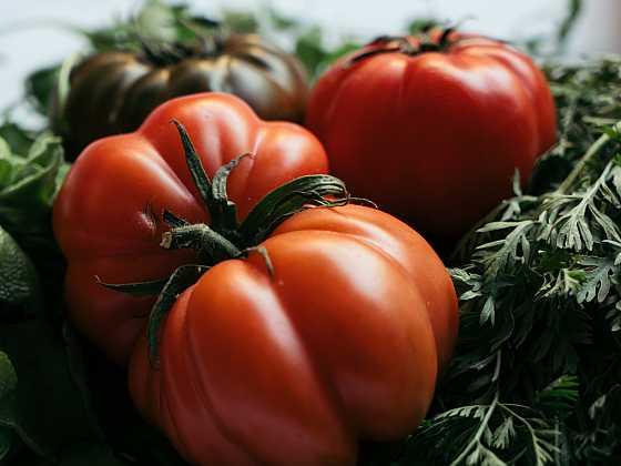 Vypěstujte si zeleninu s obřími plody (Zdroj: Depositphotos)