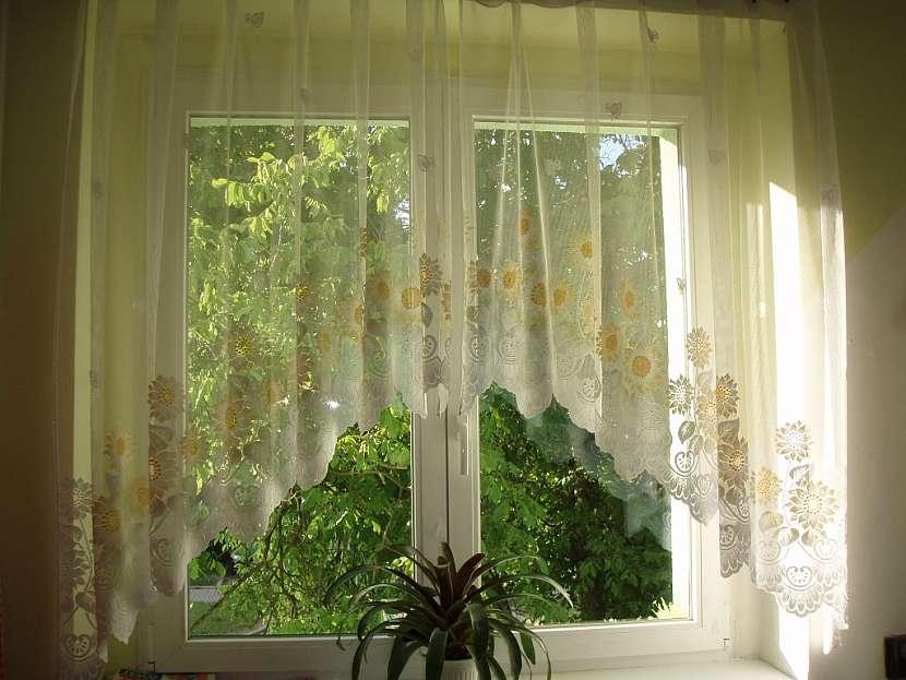 4 mýty o oknech a tipy pro výběr těch nejvhodnějších