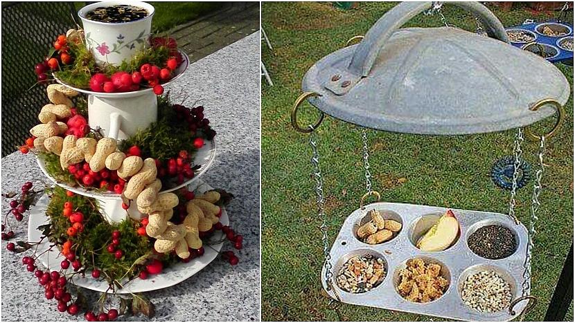 Zimní zahrada: nápady zkuchyně