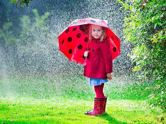 Nenechte se na zahradě překvapit výkyvy počasí (Zdroj: Depositphotos)
