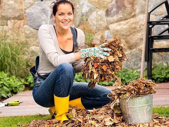 Podzim je čas přípravy zahrady na zimu (Zdroj: Depositphotos (https://cz.depositphotos.com))