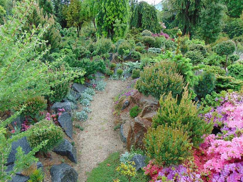 Čarověníky z přírody v zahradní kompozici